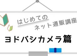 logo_yodobashi